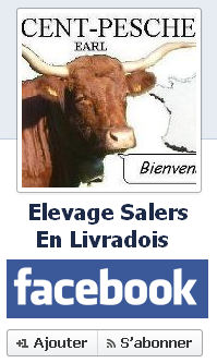 Find the VINCENT-PESCHER's Salers Breeding and Cattle on Facebook !