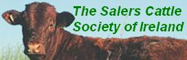 Para ver la Salers Irish Cattle Society